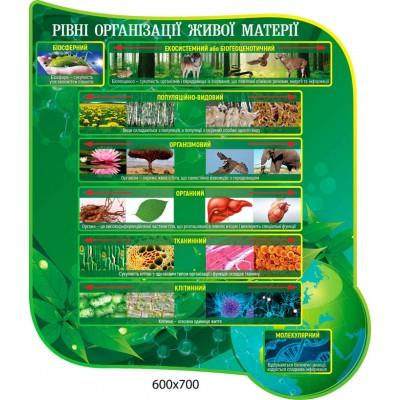 Стенд Уровни организации живой материи