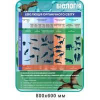 Стенд Эволюция органического мира