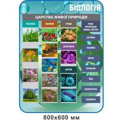Стенд Царства живої природи (блакитний)