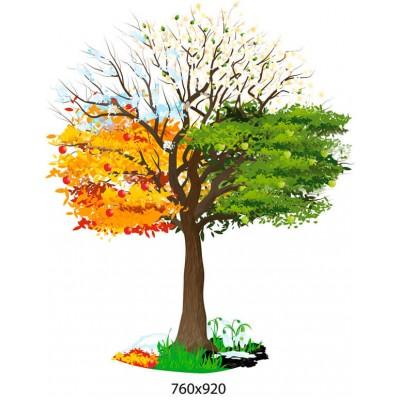 Стенд Дерево по сезонах року