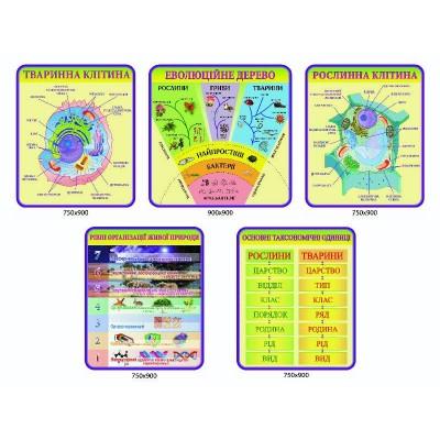 Набор стендов в кабинет биологии (зеленый)