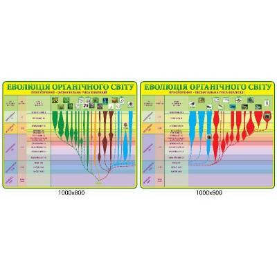 Стенд Еволюція органічного світу (зелений)